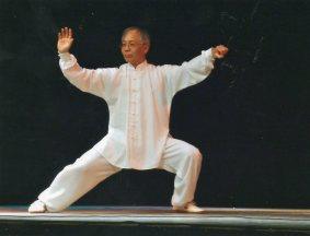 TAIJI, Mr Yuan