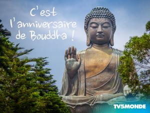 Anniv Bouddha TV5